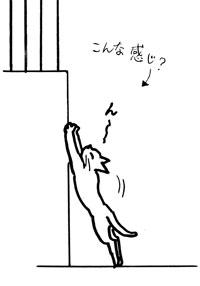 猫の足跡3