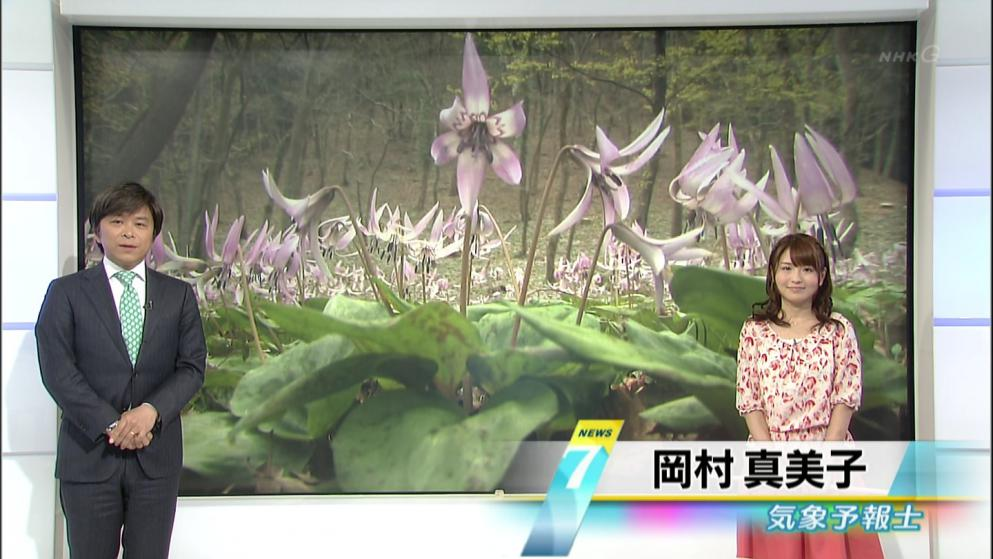 岡村真美子 NHK