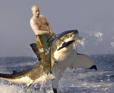 サメに乗るプーチン大統領