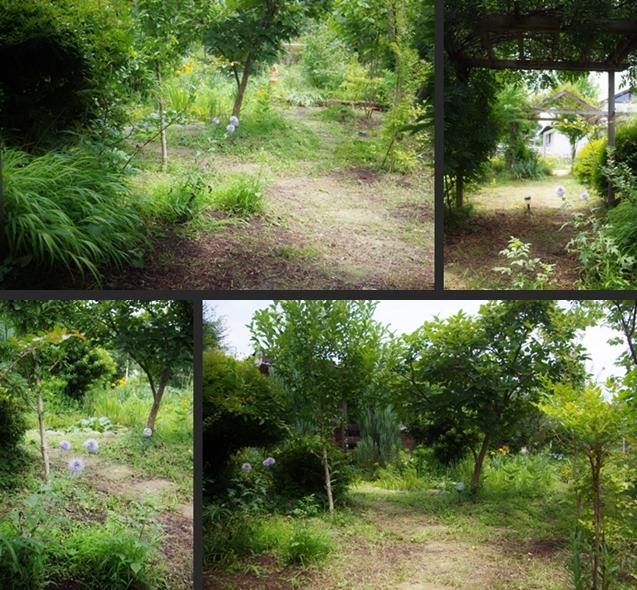2013-08-05 2013-08-05 002 062-horz-vert