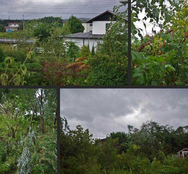 2013-09-16 2013-09-16 002 013-horz-vert