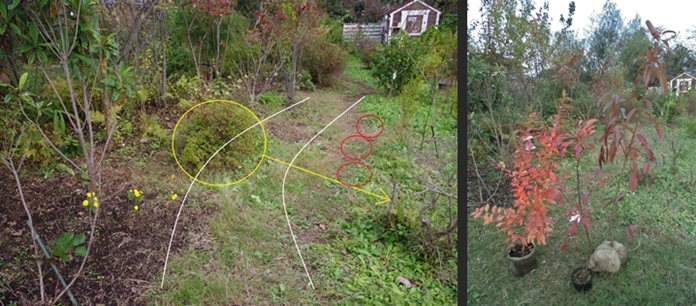 2013-10-31 2013-10-31 001 058-horz-vert