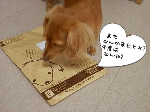 来たぁ~~☆