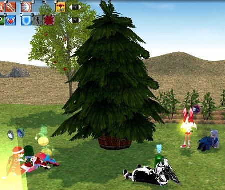 クリスマスツリー来た!