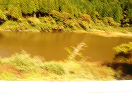 20131015お玉が池