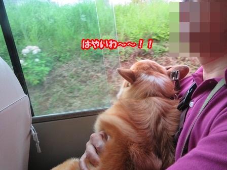 バス、たのし~!