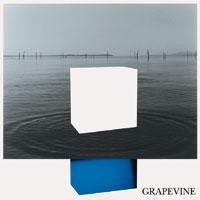 grapevine2.jpg