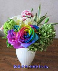 IMG_7色のバラ
