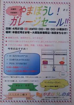 DSC_387511.jpg