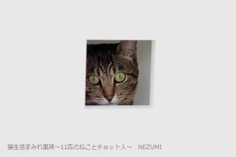 IMG_9395_1_convert_20130911191434.jpg