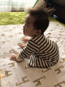 不妊治療大阪鍼灸体外受精ご懐妊1