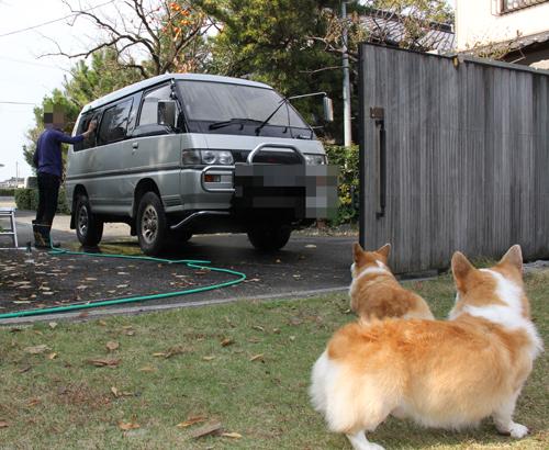 最後の洗車