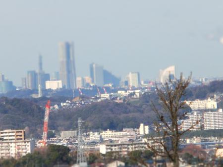 横浜ミニュチア