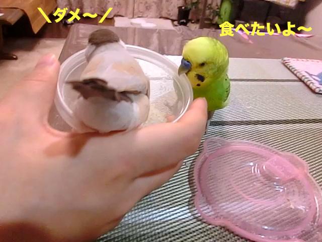 食べたいよ〜