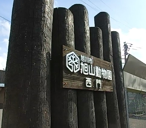 旭山動物園2