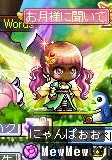 Maple131104_145309.jpg