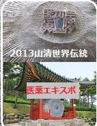 2013山清世界伝統医療エキスポマーク