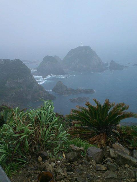 佐多岬では風が喧嘩している!!とO様が表現しました!