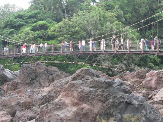 つり橋~。