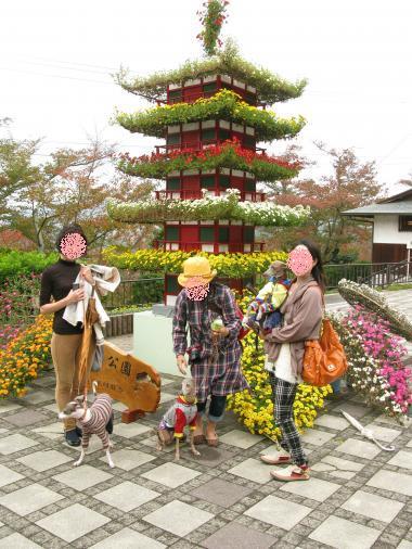 菊の五重塔