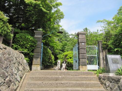 旧床几山配水池の門にてホワイトスイスシェパード ビオラ と ボーダーコリー メル