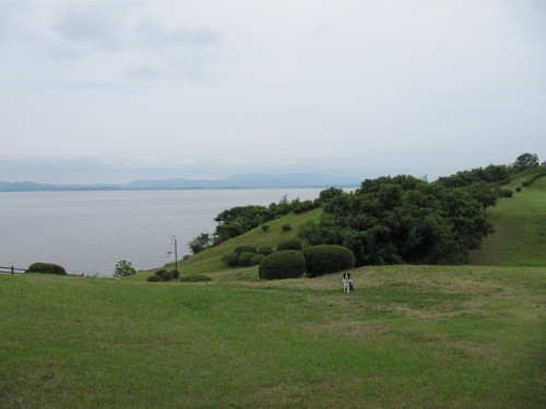 宍道湖を背景に ボーダーコリー メル