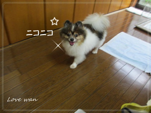 miniIMG_2300.jpg