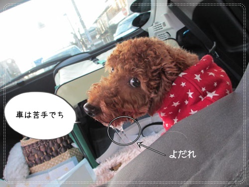 miniIMG_3697.jpg