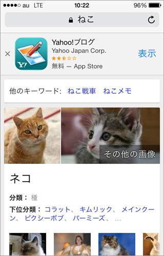 「ねこ」でググったあとにも Yahooバナー。
