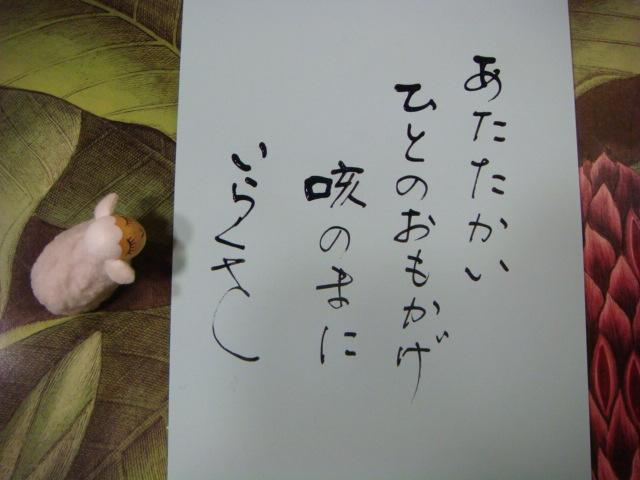 DSC04974.jpg