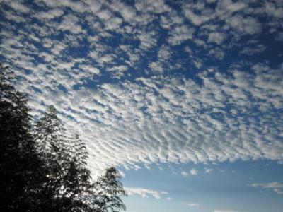 10月3日早朝の雲