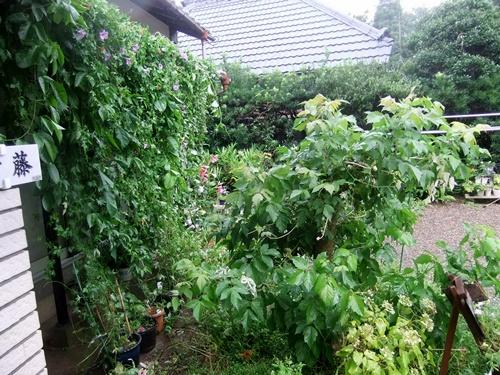 2013.9.16 台風18号被害(自宅) 002