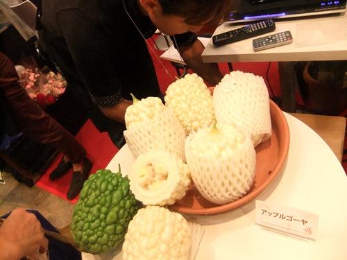 2013.10.9 農業資材エキスポ(幕張メッセ) 030