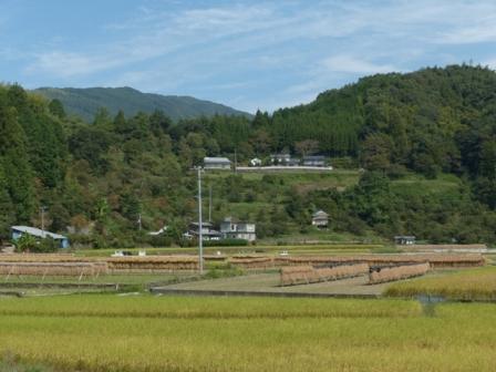 内子町 稲木風景 1
