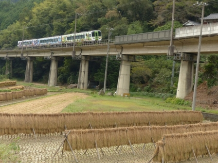 稲木と列車 アンパンマン列車 1