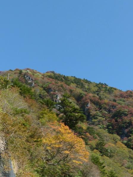 瓶ヶ森林道 紅葉 8
