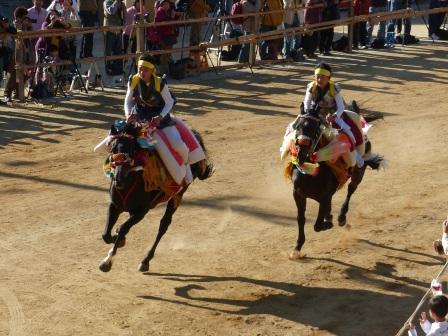 菊間祭 お供馬の走り込み 1