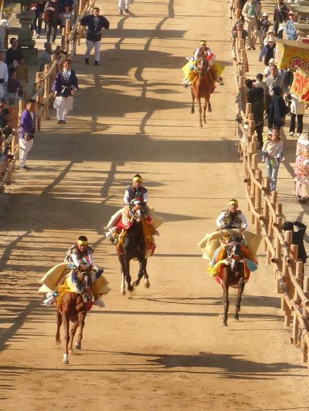菊間祭 お供馬の走り込み 2