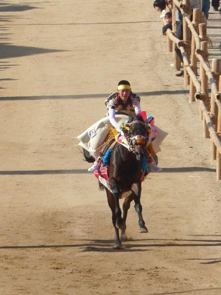 菊間祭 お供馬の走り込み 4