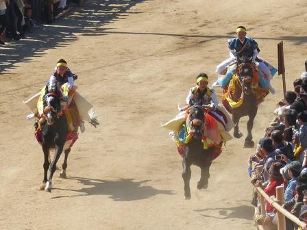 菊間祭 お供馬の走り込み 5