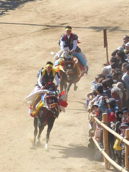菊間祭 お供馬の走り込み 6