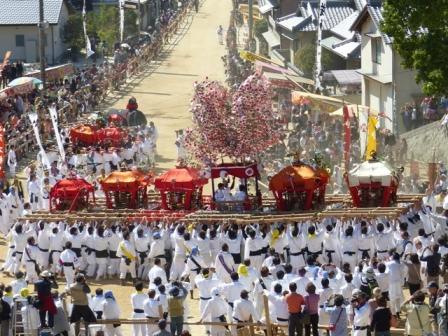 菊間祭 お神輿のお練 3