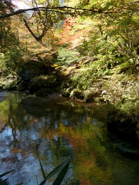 小田深山渓谷 紅葉 2