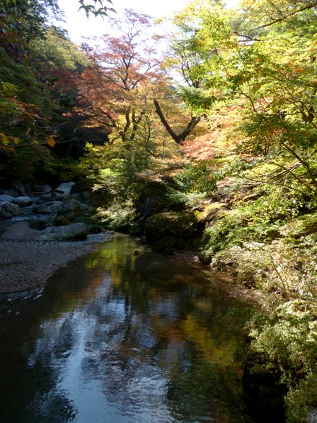 小田深山渓谷 紅葉 1
