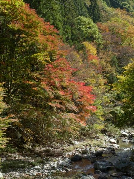 小田深山渓谷 紅葉 11