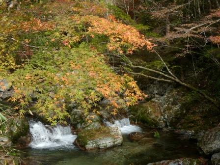 小田深山渓谷 紅葉 12