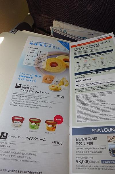 2013JUL-NH707-16.jpg