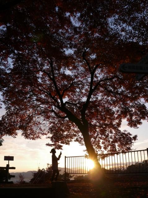 紅葉(西山公園)