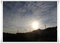 IMGP9481.jpg