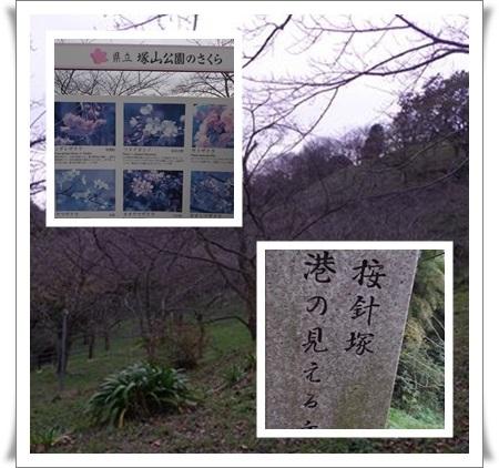 tukayama.jpg